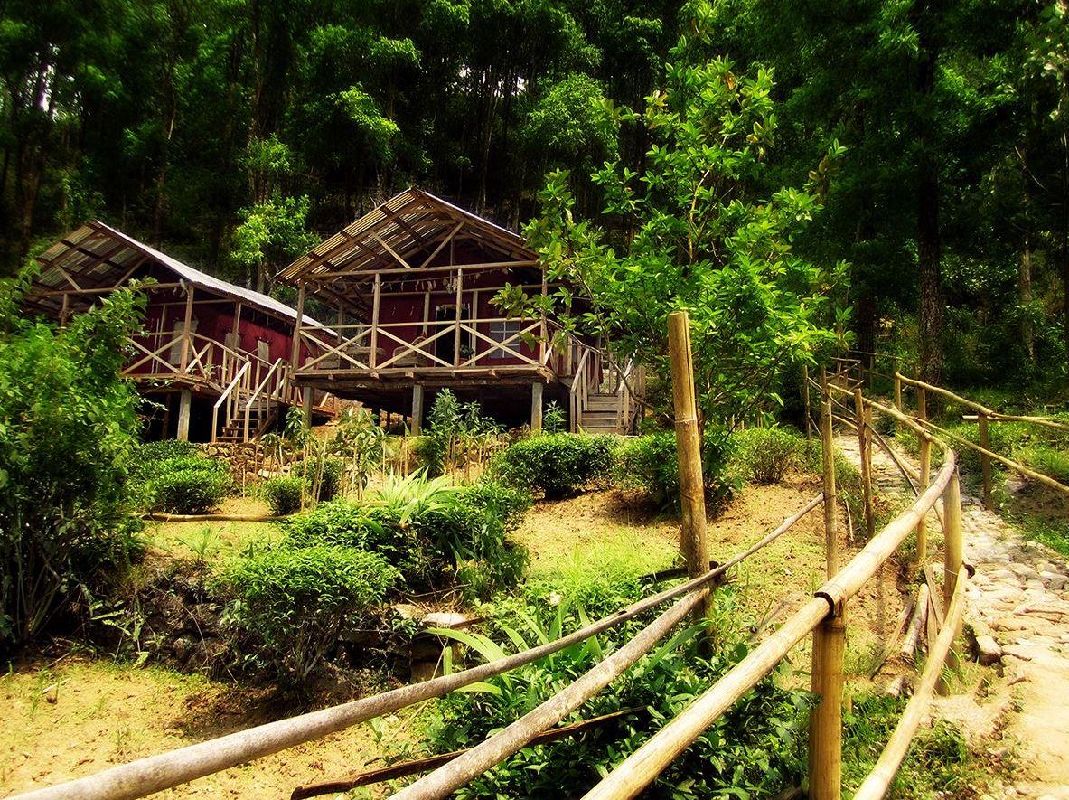 信州葡萄農園